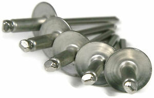 3//16 Diameter Grip Range All Aluminum Bundled W// #64 Large Flange Stainless Rivets #66 Aluminum /& #64 Large Flange S//S Rivet Bundle #66 Aluminum Rivets 100pc 1//4-3//8 50pc