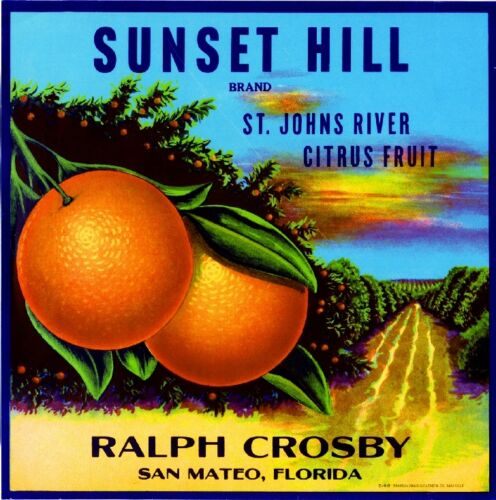 San Mateo Florida Sunset Hill Orange Crate Label  Print