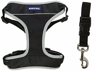 Ancol-Dog-Padded-Car-amp-Walking-Harness-Travel-Seatbelt-Clip-Lead-Safety