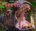 Teeth by Rebecca Rissman (Hardback, 2011)