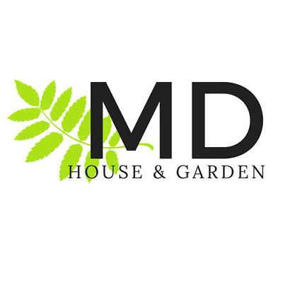 Modern Design WEB STORE