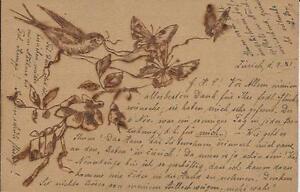 1902-Tarjeta-Postal-por-Feliz-Cumpleanos-Hecho-Mano-Pyrograph-Pajaro-y-Mariposa