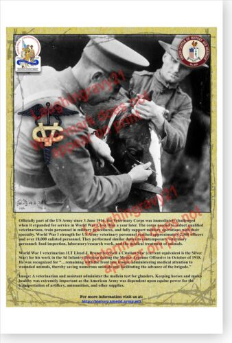 US Army Veterinary Corps AMEDD WWI Centennial Commemoration Poster