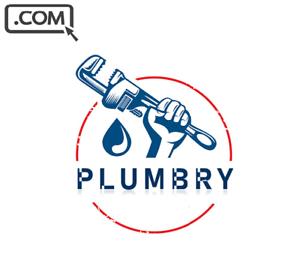 Plumbry .com  Premium PLUMBER SERVICE WEB APP Brandable Domain Name