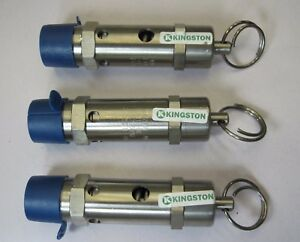 25 psi Set Pressure 1//4 NPT Male Kingston 112CR Series Stainless Steel ASME-Code Safety Valve