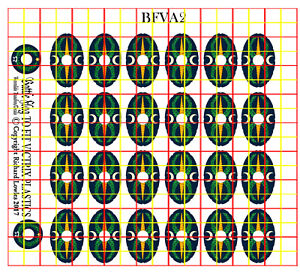 Details about Shield Decals for Victrix Early Imperial Roman Auxiliary  Infantry (AUX2)
