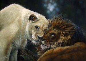Original-Pastel-Painting-Lion-Big-Cat-Wildlife-Art-by-Christina-Schulte