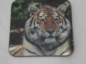Tiger-design-coasters-ideal-gift-FREE-PERSONALISATION