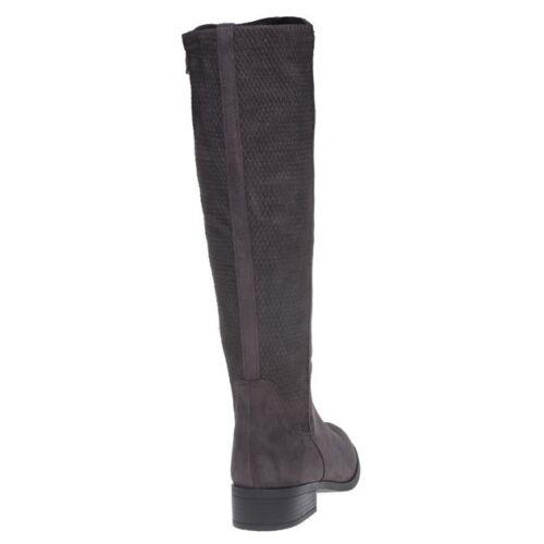 New Stivali elasticizzata Stivali 30515 Zip Brown sintetici Womens Xti wqxPwnFBv4