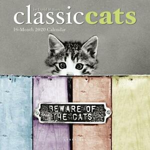 Classic-Cats-2020-Mini-Wall-Calendar-by-Browntrout-Free-Post