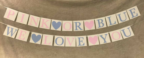 """Baby Shower Banner /""""Pink or Blue We Love You/"""""""