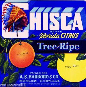 Bartow Polk County Florida Overall Orange Citrus Fruit Crate Label Art Print