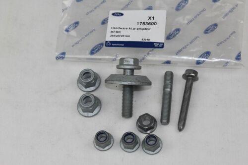 Original Courroies pompe à eau 1,6 Diesel Ford Focus-C-Max 2008686