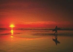 SURFING IN THE SUNSET A3 ART PRINT POSTER GZ5486