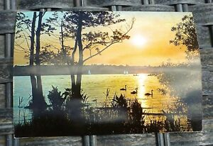 Coucher-a-Havel-Berlin-Carte-Postale-50er-60er-Annees-Kruger-921-142-A