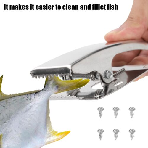 Stainless Steel Fish Clamp Tail Clip with Mounting Screws for Cleaning Board