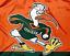 NEW-Miami-Hurricanes-Flag-Large-3-039-X5-039-University-of-Florida-NCAA-FREE-SHIPPING thumbnail 2