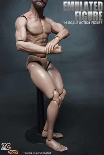 ZC Toys 1//6 Scale Emulated Figure Muscular Body For Hot Toys