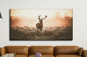 leinwand bild xxl 100x50cm hirsch wald geweih 1 teiler wandbild ebay. Black Bedroom Furniture Sets. Home Design Ideas