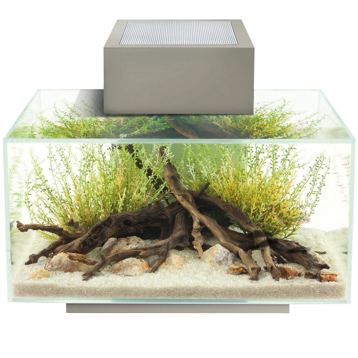 Zinnfarbendes Aquarium Fluval Edge - 23 Liter mit mit mit LED-Beleuchtungssystem 15386 de2783