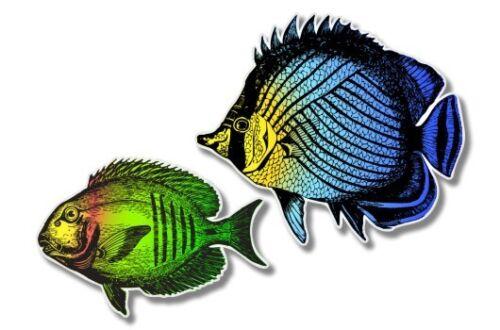 SELECT SIZE Tropical Fish Colorful Car Laptop Phone Vinyl Sticker