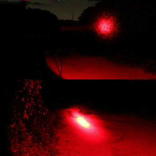 Adjustable Focus 1000LM LED Red//Green Light Zoom Flashlight Torch Lamp AA//14500
