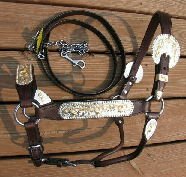 Dark Oil Silver Horse Show Halter - Gold Accents - Matching Lead Shank