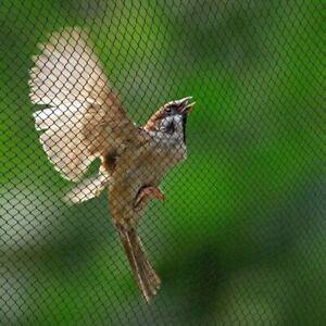 Anti-Bird-Mesh-Netting-Garden-Plant-Fruit-Tree-Crop-Protection-Preventing-Pond