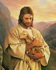 JESUS Carrying Lamb / Christian Christianity 8 x 10 / 8x10 GLOSSY Photo Picture