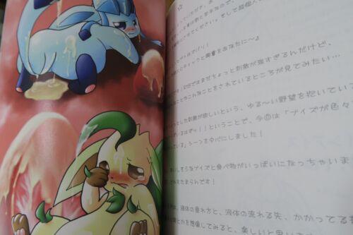 B5 14pages POKEMON Doujinshi Eeveelution main Full Color Pokemono furry kemono