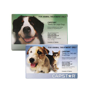 CAPSTAR-TABLETS-for-Dogs-amp-Cats-Oral-Flea-Treatment-Tablets-GREAT-PRICE