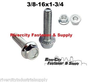 "400 5//16/""-18x3/"" Hex Head Serrated Flange Bolt Zinc Grade 5"
