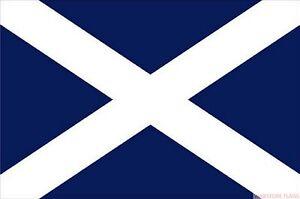 Image result for scotland mini flag
