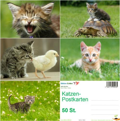 """50 St. /""""50 SÜSSE KATZEN/"""" ideal für Postcrossing Postkarten-Set"""