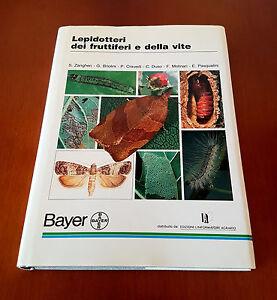 LEPIDOTTERI-DEI-FRUTTETI-E-DELLA-VITE-Zangheri-Briolini-1992-1-Edizione-H