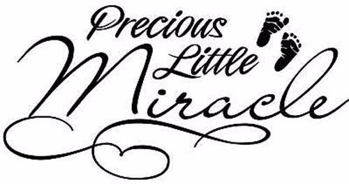 Precious Little Miracle Vinyl Decal Home Wall Decor