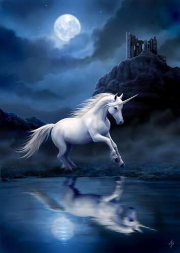 Anne Stokes Postkarte Brief Einhorn Grußkarte Fantasy Moonlight Unicorn