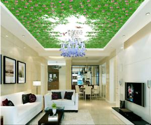 3D greene Gras Vogel 7 Fototapeten Wandbild Fototapete BildTapete Familie DE Kyra