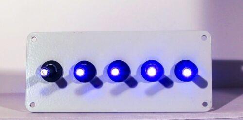 BLUE w//  White panel LED toggle switches