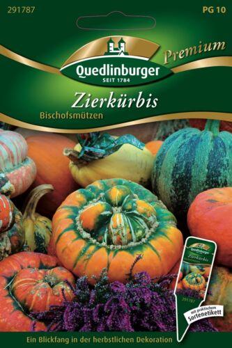 "Zierkürbis  /""Cucurbita pepo/""   Samen Quedlinburger Premium Saatgut"