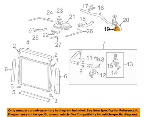JAGUAR OEM 02-08 X-Type 3.0L-V6 Radiator-Upper Inlet Hose C2S14031