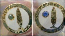 "2 Cypress School District Service Award Pin Faux Gemstone Color 3/4"" diam"