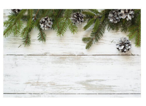 50 CHRISTMAS CARDS TAGS GIFT TREE PINE CONES GREEN WHITE PLACE name Thank You