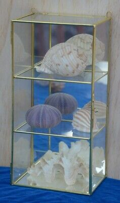 "5/""Hx5/""Wx5/""D Glass-Brass Display Showcase 9315"