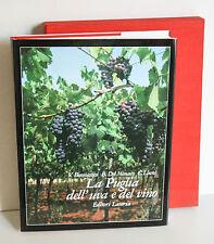 LA PUGLIA DELL'UVA E DEL VINO Editori Laterza 1983 M69