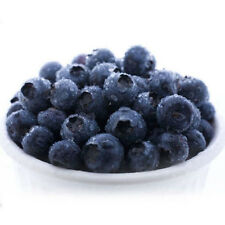 50Pcs Blueberry Tree Seed Fruit Blueberry Seed Bonsai Potted Seeds Delicious