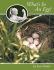 What's in an Egg? by Joan Budai 9781463410506 Paperback 2011