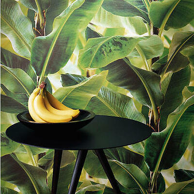 Tropical Vibrant Coloured Palm Leaves Wallpaper - NEW - German Made