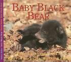 Baby Black Bear by Aubrey Lang (Paperback / softback, 2008)