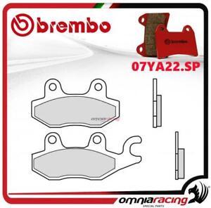 Brembo-SP-pastillas-freno-sinter-trasero-Triumph-Tiger-900-Pinza-sx-1992-gt-1998